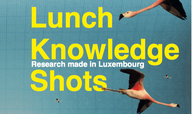 28.10: Lunch Knowledge Shot